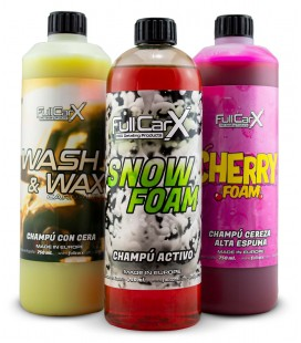KIT Shampooings FCX